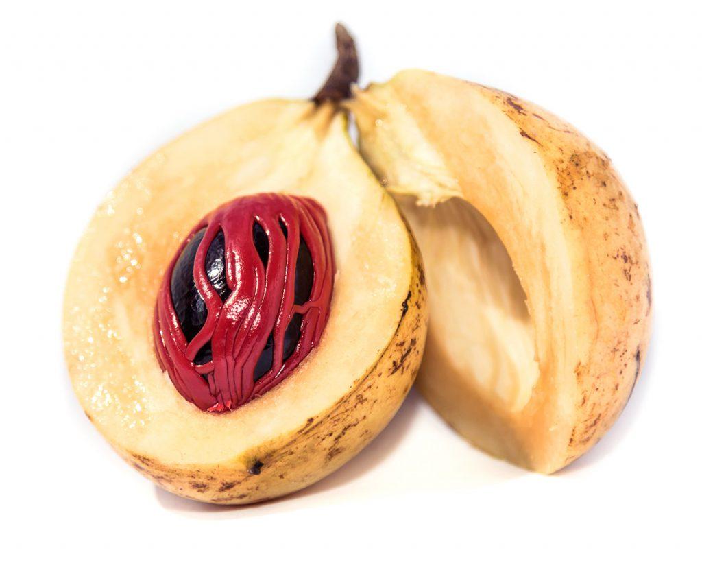 Fresh nutmeg fruit